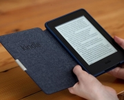 Lev com Luz ou Kindle Paperwhite (12)