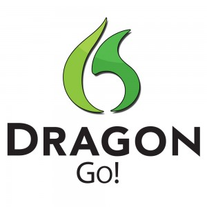 Dragon Go